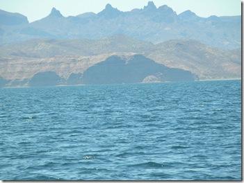 to Puerto Escondido 097