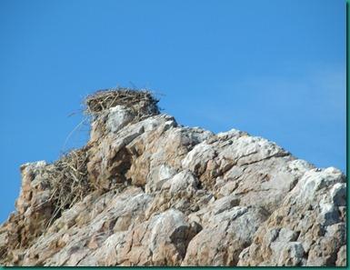 Playa El Burro2 013